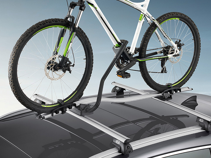 Cross bars and ProRide bike carrier